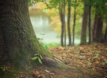 Sposób na jesienną chandrę...