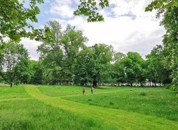 Trwa sezonowe koszenie trawników we Wrocławiu. W mieście widać pierwsze efekty