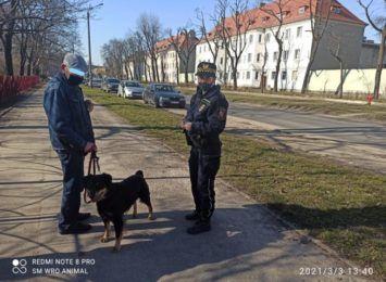 Psiarze pod okiem miejskich strażników