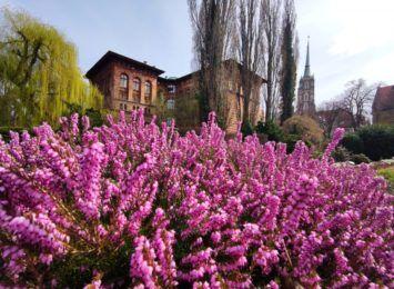 UWr otwiera swoje ogrody botaniczne
