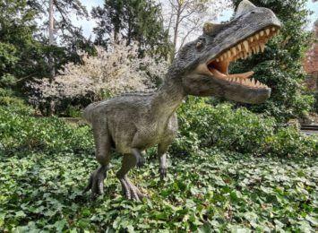 Od 1 maja w Ogrodzie Botanicznym można zobaczyć dinozaury