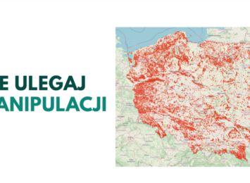Aktywiści stworzyli mapę wycinek lasów. To manipulacja - odpowiadają Lasy Państwowe