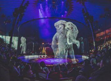 Do Wrocławia przyjedzie cyrk z hologramami zamiast dzikich zwierząt