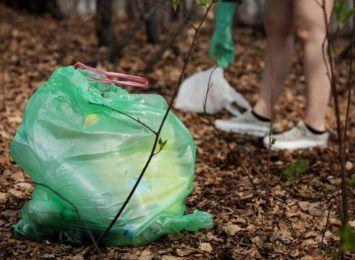 Śmieci w lasach, apel leśników